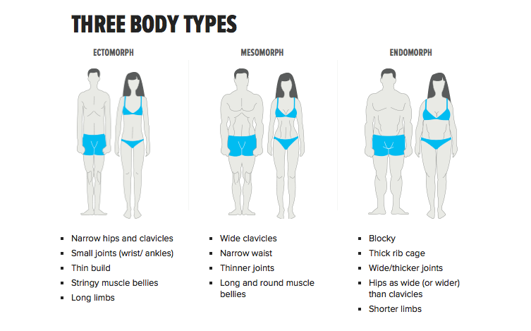 Three Body Types - Weight Control