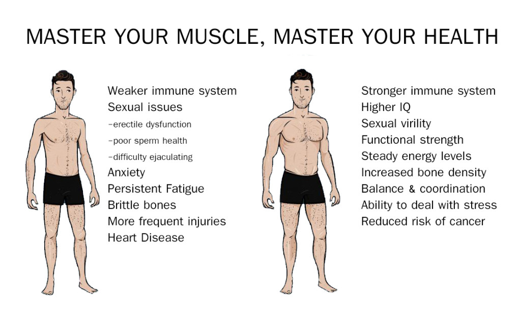 Muscle Building - Master your muscle - Master your health